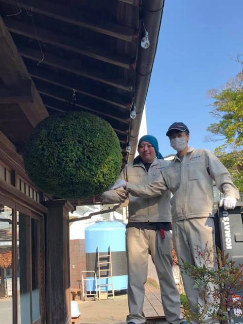 泉橋酒造 2020年杉玉を飾る蔵人